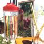 Shaker 20 cocktails  - Kits et préparations